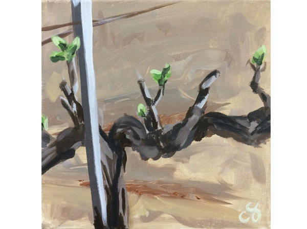 Buttonwood Painting in the Vineyard