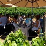 Wine tasting, Santa Ynez, wine country, Santa Barbara wine country